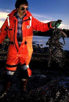 Oil spill kill