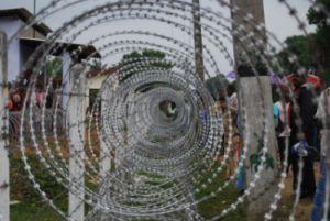 tamil prisoners